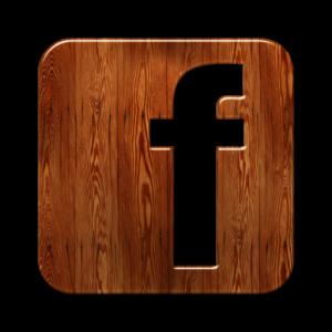 1377154923_facebook-logo-square-webtreatsetc